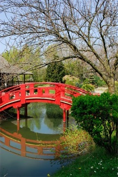 japanese_gardens.02